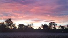 Beautiful sunset over a field of corn.  #getoutside #explorenature by kripple46