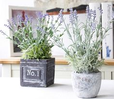 Attractive Home Decoration Zakka Plastic Flowers Lavender Artificial Potted Plant