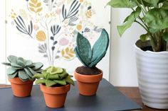 I love to have plants around me, but my home is small and there are lots of spots that just dont get enough light to sustain a good variety of plant life. These wee felt succulents are perfect! They may not breathe more oxygen into your space, but theyll make you smile and thats good for your health too. No green thumb needed!  Each plant is hand stitched and hand sculpted, making each unique. They can be removed from the pot should the pot need to be replaced, but they will not fall out…