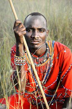 Masai Warrior Portrait