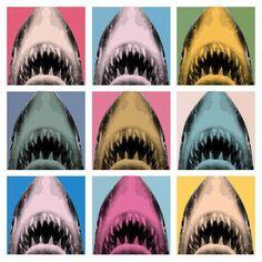 My Shark