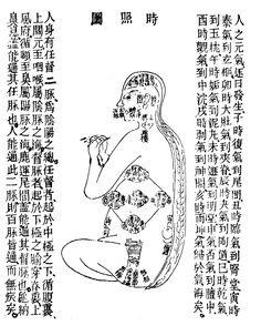 時照図 Yang Style Tai Chi, Tai Chi Qigong, Protected Species, I Ching, Qi Gong, Taoism, Traditional Chinese Medicine, Aikido, Acupuncture