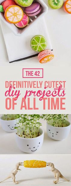 The 42 Definitively Cutest DIY Projects Of All Time