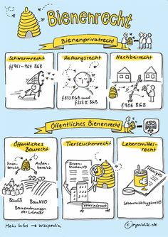 Bienenrecht im Überblick Pink Tax, Visual Note Taking, Visual Learning, Sketch Notes, Storyboard, Note Cards, Infographic, Doodles, Sketches