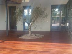 Nuova offerta: Pavimentazione per esterno in legno - Vicenza
