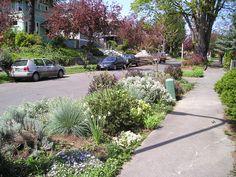 Landscape Design Ideas | DIY