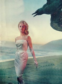 """20 Amazing Publicity Photographs of Tippi Hedren for 1963 Horror Classic """"The Birds"""" ~ vintage everyday Old Hollywood Movies, Old Hollywood Glamour, Vintage Hollywood, The Birds Movie, Tippi Hedren, Nastassja Kinski, Nostalgia, Melanie Griffith, Alfred Hitchcock"""