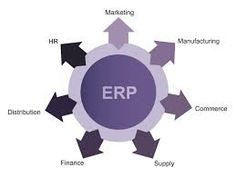 The Online ERP Software ensured complete transparency between the developers of the application as well as their clientele.
