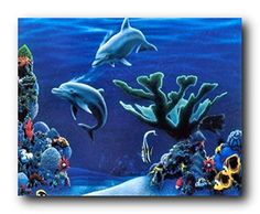 Impact Posters Gallery offers you this beautiful tropical fish and dolphins underwater ocean art print poster which will bring tropical charm and underwater ocean beauty into your home decor. This beautiful wall art will go well with all home decor patterns. It will make a great gift for every ocean lover. What are you waiting for? Grab this wonderful wall art for its perfect quality with wonderful color accuracy. Make your order today!