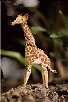 One of the best origami giraffes!