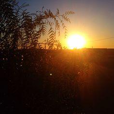#sunrise in Santa Adélia - Brazil