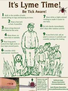 Lyme disease is the fastest growing infectious disease in America. There are 10 times more cases than AIDS, SARS, West Nile Virus and Swine. Chronic Illness, Chronic Pain, May Awareness Month, Lyme Disease Prevention, Tick Fever, Body Sculpting, Ticks, Pediatrics, You Can Do