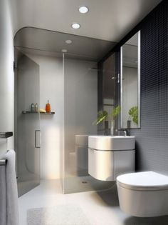 Gallery For Website Remove the tub and create a walk in shower for a sleek and modern small bathroom