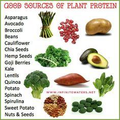 Pineal diet