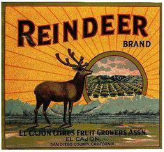 Vintage Animals Labels