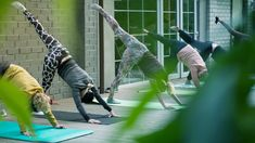 Poke fun at goat yoga all you want, but don't underestimate the booming wellness industry. Goat Yoga, Wellness Industry, Yoga Teacher Training, Market Trends, Industrial, Marketing, Fun, Articles, India
