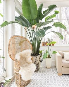 There's always room for more plants! Double tap if you agree #HesbyStyle via @apartmenttherapy