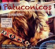 Collar perro pequeño Patuconicos