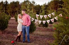 Christmas tree farm pictures