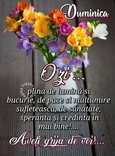 Phonetic Alphabet, Floral, Instagram, Beauty, Happy Day, Bom Dia, Florals, Beauty Illustration, Flower