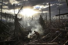 A man fans flames in Tanauan, Philippines, on November 19, 2013. On November 8th, 2013, one of the most powerful storms ever recorded hit th...