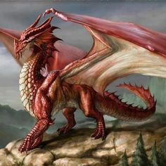 What Kind Of Dragon Are You?