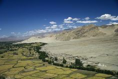 Indus Valley today