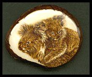 'Koala & Kid' - Koalas burnt on tagua slice. This sort of fur is best built up by gradually applying stipples. Sold
