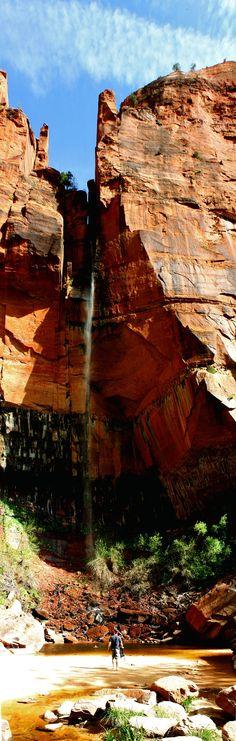 nature photography #utah #hiking #zions