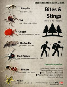 {Infographic} Insect Identification Guide. Every wonder what's biting you when you head into the great outdoors, and what you can do about it? Click the image for more info. and a printable PDF!