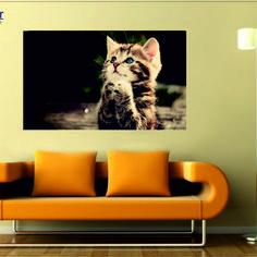 tablou canvas 008 Canvas, Animals, Tela, Animales, Animaux, Canvases, Animal Memes, Animal, Animais