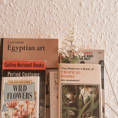 books n things uploaded by s a r a h 🌿 on We Heart It Book Aesthetic, Aesthetic Pictures, Gem Guide, Books To Read, My Books, Period Costumes, Egyptian Art, Love Book, Pretty Pictures