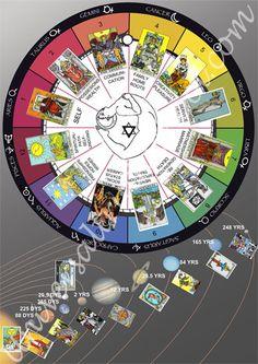 Tarot and the Zodiac - Universal Truth School Videos Learn Astrology, Tarot Astrology, Astrology Numerology, Astrology Chart, Astrology Zodiac, Horoscope, Zodiac Signs, Chakra, Tarot Card Spreads
