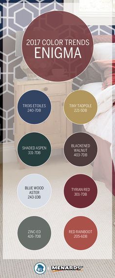 Embrace the mystery of the nighttime sky with our Enigma Color Trend. Dark, moody jewel tones like Trois Etoiles 240-7DB and Shaded Aspen 331-7DB work well with light accents like Blue Wood Aster 243-1DB and Tiny Tadpole 221-5DB. Find these and more at your local Menards®.