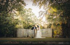 Wedding Ceremony | Farm Wedding Ceremony | Wedding Arch | Rustic Wedding Arch | Farm Wedding | Destination Wedding | Los Cabos Wedding | Amy Abbott Events | Dino Gomez Photo | Wedding Inspiration | Wedding ideas