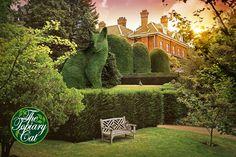 The Topiary Cat spots a friend by Rich Saunders Cat Garden, Garden Art, Richard Saunders, Beautiful Gardens, Beautiful Flowers, Topiary Garden, Cat Statue, Cat Colors, Gras