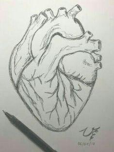 Dark Art Drawings, Art Drawings Sketches Simple, Pencil Art Drawings, Drawings Of Love, Heart Pencil Drawing, Human Heart Drawing, Meaningful Drawings, Arte Grunge, Psychedelic Drawings