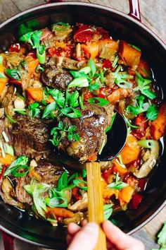 Instant Pot Taiwanese Beef Stew (Paleo, Keto) Instant Pot Taiwanese Beef Stew with beef shank. Easy healthy and low carb electric pressure cooker beef stew recipe. Low Carb Beef Stew, Pressure Cooker Beef Stew, Easy Beef Stew, Pressure Cooker Recipes, Pressure Cooking, Chinese Beef Stew Recipe, Slow Cooker, Top Recipes, Whole 30 Recipes