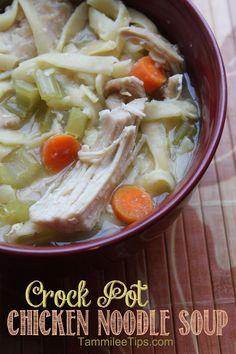 Crock Pot Chicken Noodle Soup (click picture for recipe details)
