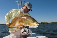 Flats Fly Fishing for redfish