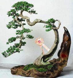 Bonsai in organic vase