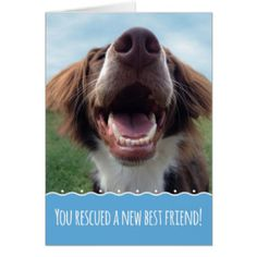 93 Best Greeting Cards Images