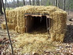 Pallets and hay bales shelter