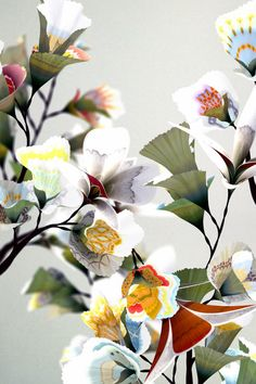 Daniel Brown's in Flowers