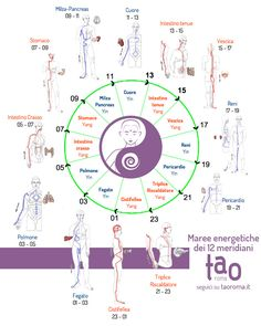 Nel corpo umano ci sono 12 meridiani, ognuno dei quali corrisponde ad un organo o un viscere. Nei meridiani scorre l'energia che sostiene la vita (ilqi): lamedicina tradizionale cinese ci insegna che questa energiasegue un…