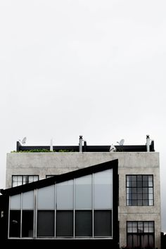 minimal + cropped + concrete + industrial windows
