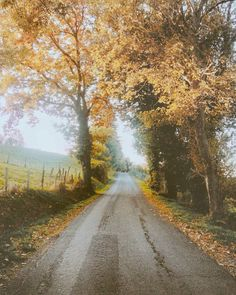 Country road (no location given) by Fenir Brooklyn