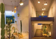 Ein hängender Garten im Haus!  https://www.homify.de/ideenbuecher/53342/7-sensationelle-ideen-fuer-indoor-gaerten