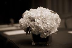 Classic white hydrangeas at the historic Madison hotel in Washington, DC