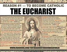 reason I became Catholic. Belief in the Real Presence Jesus Eucharist Catholic Answers, Catholic Beliefs, Catholic Prayers, Catholic Saints, Roman Catholic, Christianity, Catholic Bible, Sacramento, True Faith